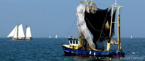NVWA en politie nemen schietfuiken in beslag op IJsselmeer
