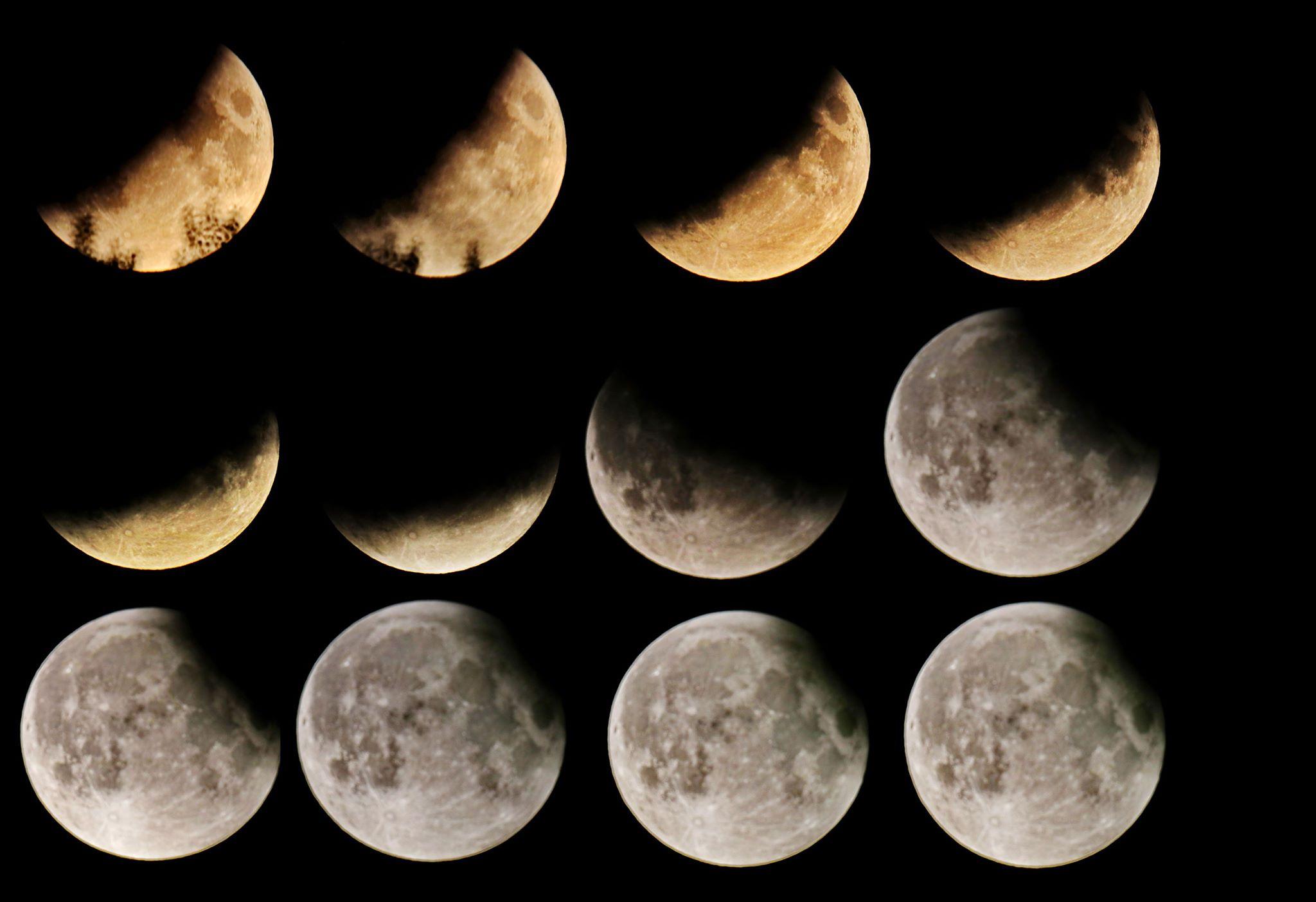 Gedeeltelijke maansverduistering vanuit de Volkssterrenwacht gefotografeerd - De verschillende fases van de gedeeltelijke maansverduistering - foto © Theo Mulder