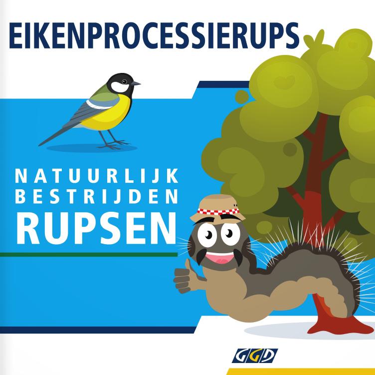 Eikenprocessierups ook in West-Friesland