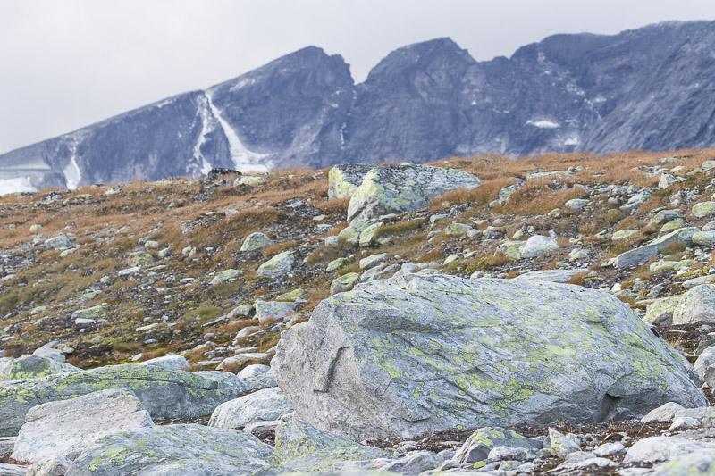 Servan Ott Fotografie: Dovrefjell landschappen