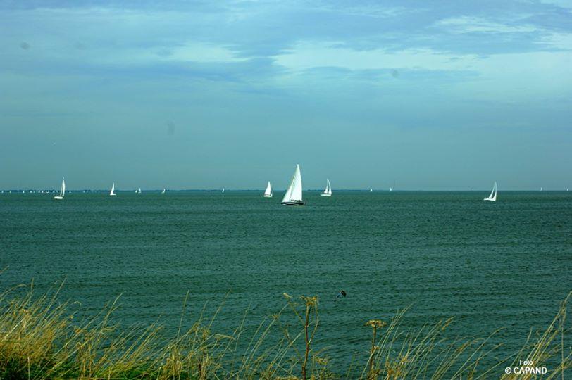 Dorpsraad Andijk: Laat het historisch weidse uitzicht op het IJsselmeer intact!