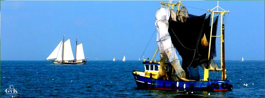 Handtekeningenactie voor behoud van het IJsselmeer bij Andijk