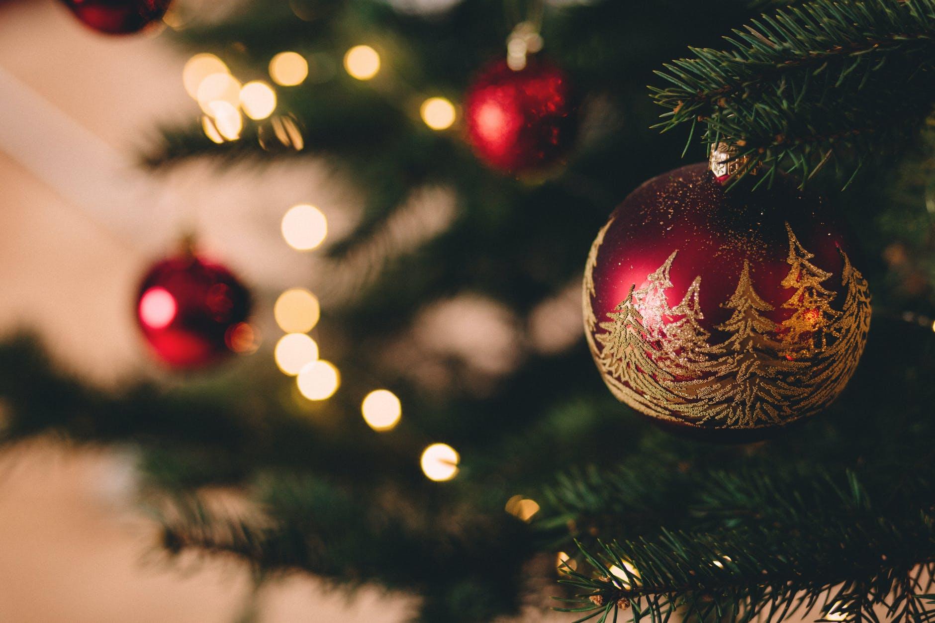 Gemeente Medemblik haalt kerstbomen op