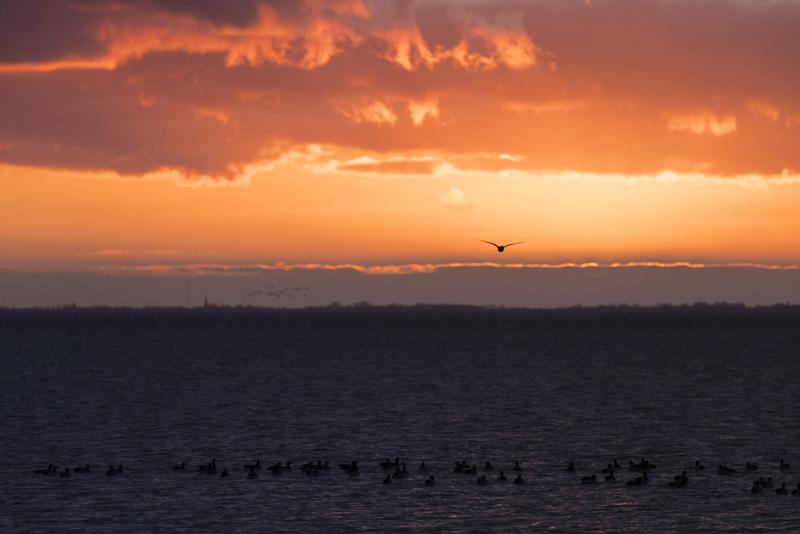 Servan Ott Fotografie: Bijzondere luchten op Schiermonnikoog