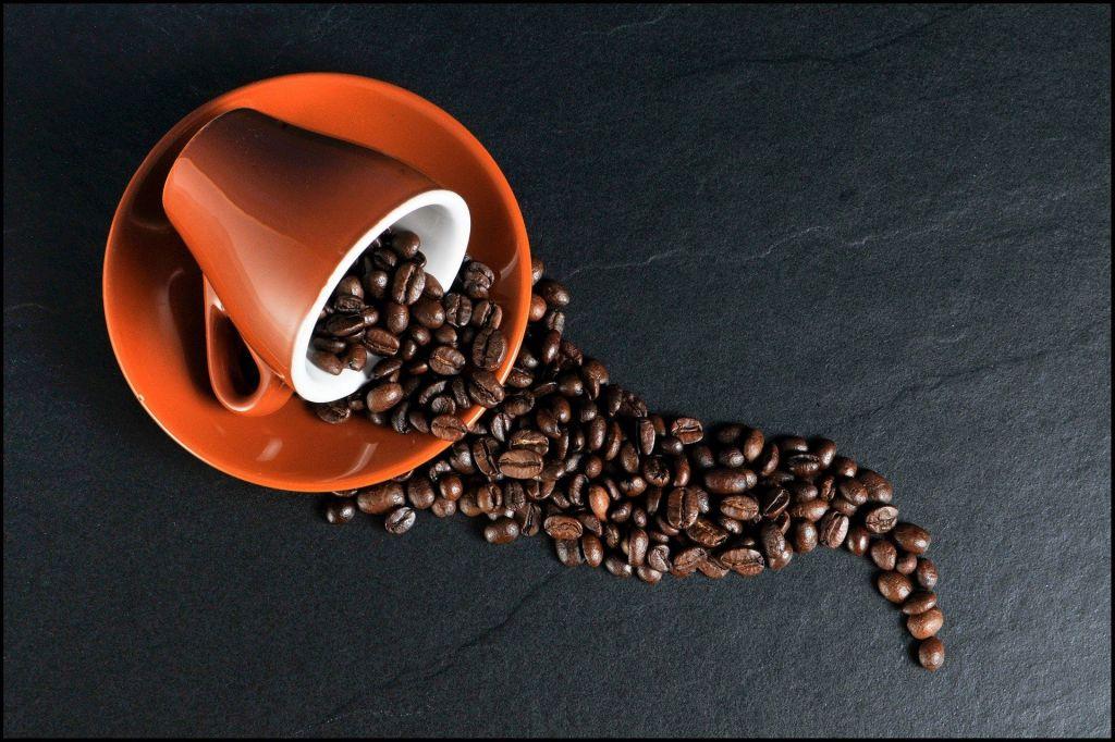 Koffie met een Rietje in Andijk gaat digitaal
