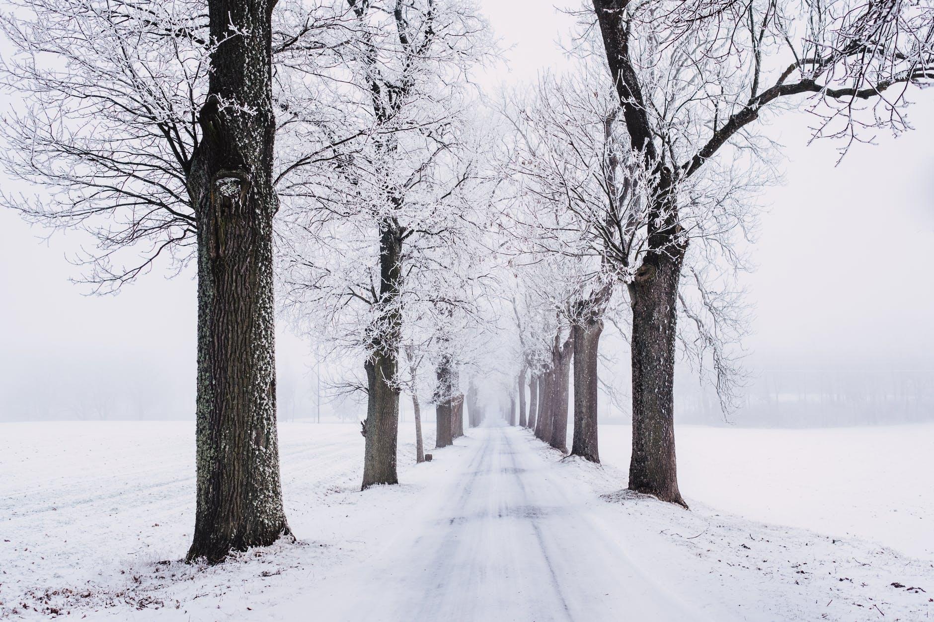 Zaterdag: Sneeuw! (Code Geel)