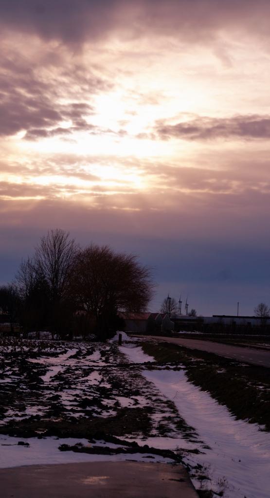 Zonsondergang aan de Veenakkers in Wervershoof - Foto © CAPAND